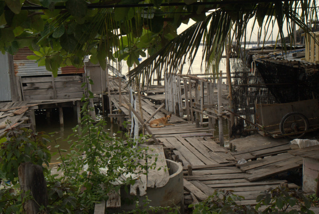Do Pattayi (niekoniecznie) i byle nie dostać mandatu! 70