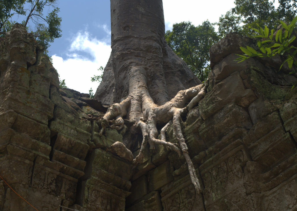 W stolicy Khmerów (Angkor Wat) 8