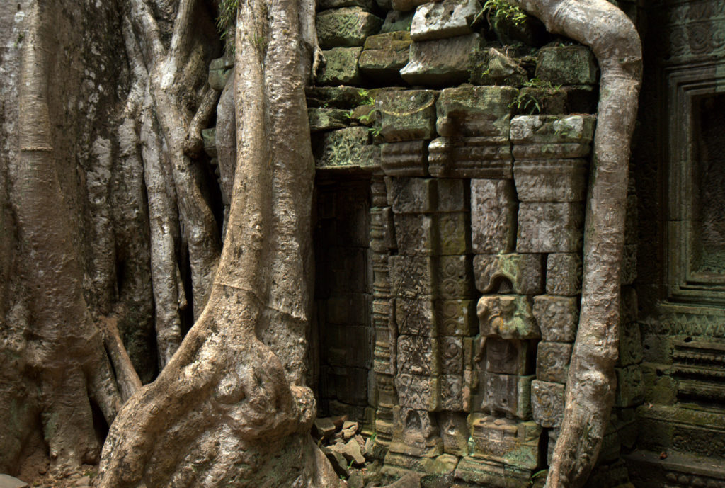W stolicy Khmerów (Angkor Wat) 6