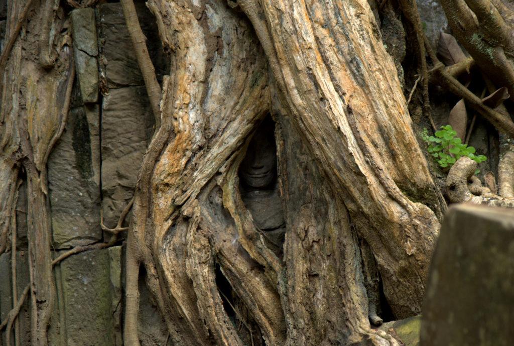 W stolicy Khmerów (Angkor Wat) 3
