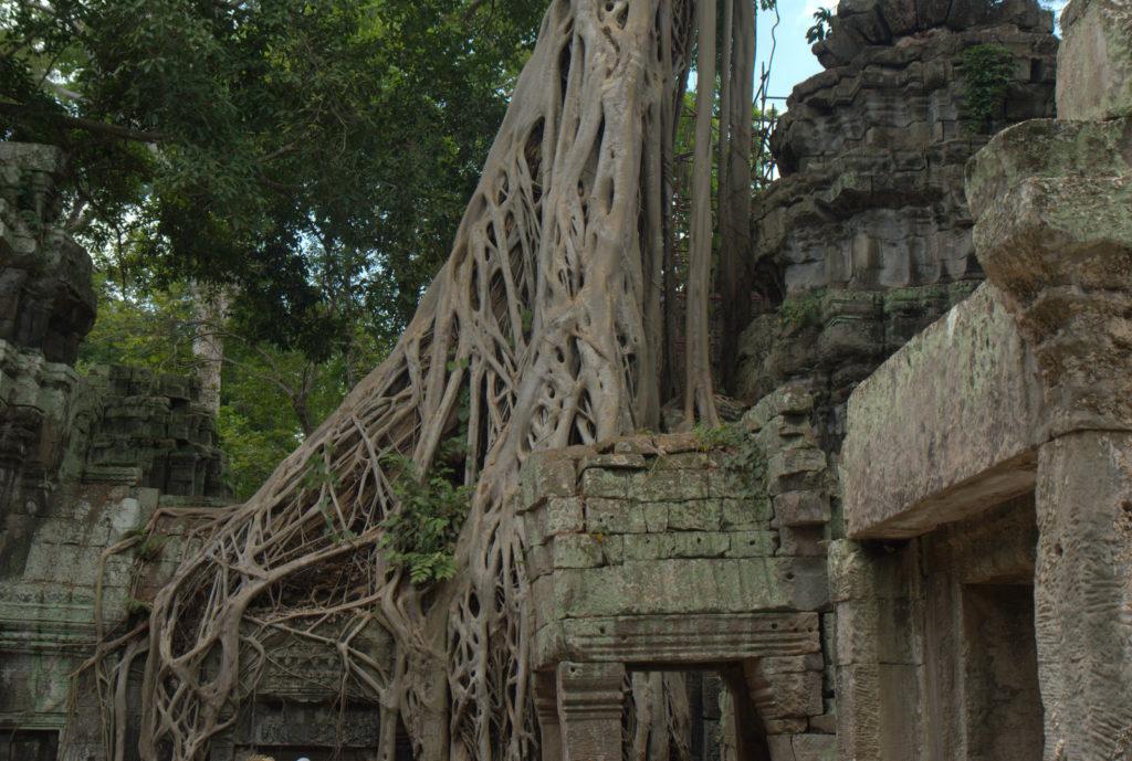 W stolicy Khmerów (Angkor Wat) 7