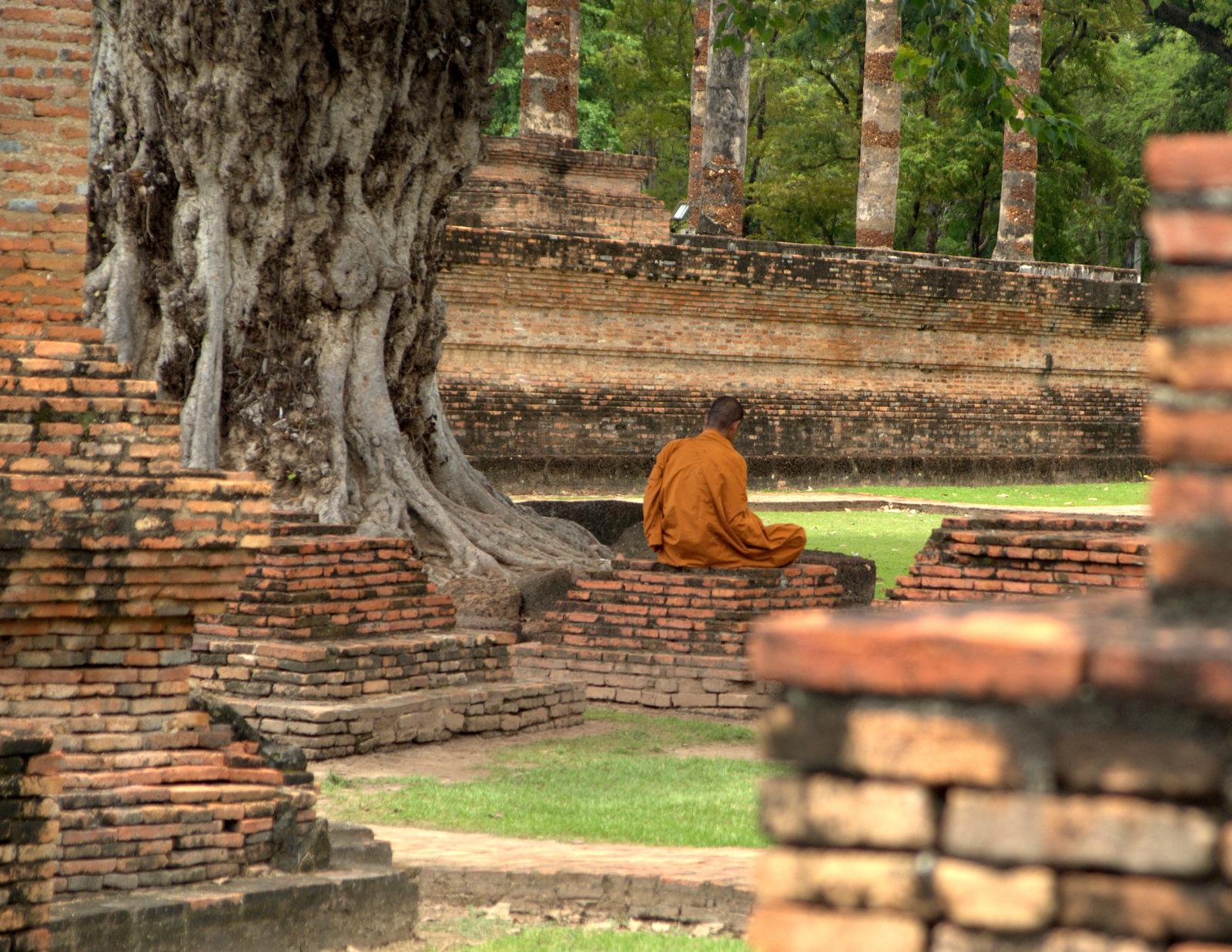 Miasta kultu, miasta małp, ale najbardziej Lampang 150