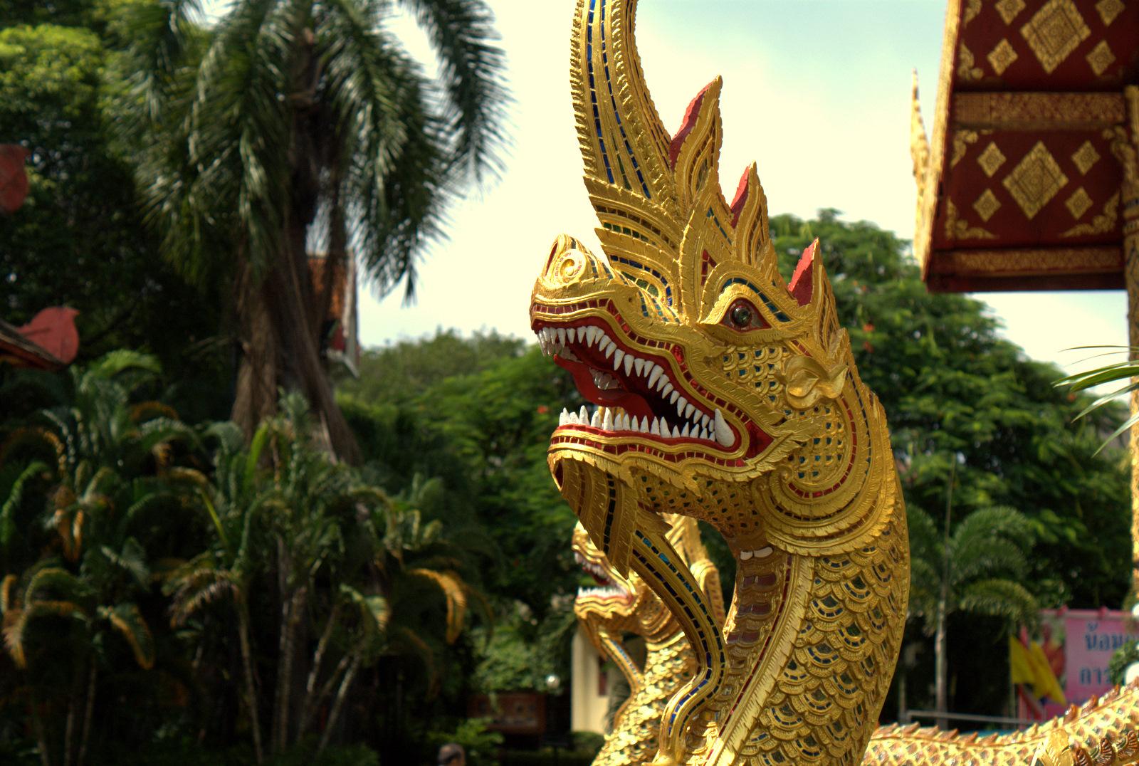 Pociągiem do Chiang Mai (i dalej na Północ) 13