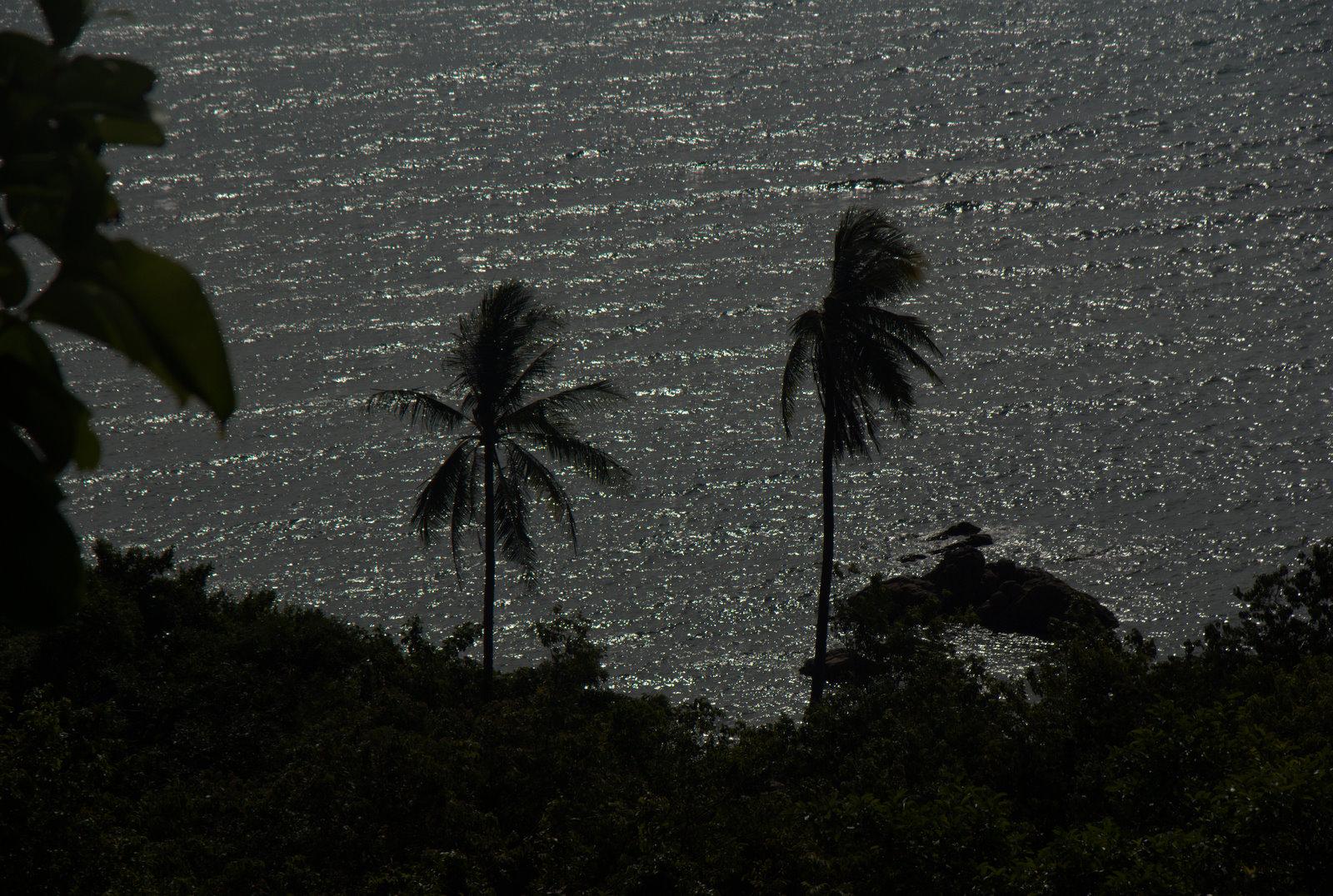 Trzy rajskie wyspy, pierwszy snorkeling i... 48