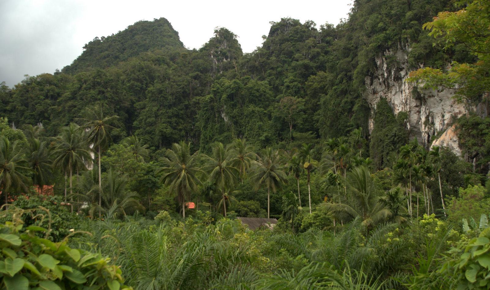 Jeziorem Cheow Lan, dżunglą, na plażę Railey 101