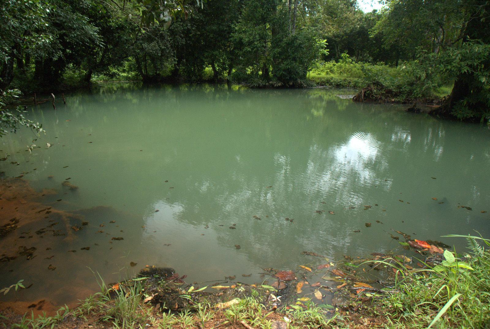 Jeziorem Cheow Lan, dżunglą, na plażę Railey 109
