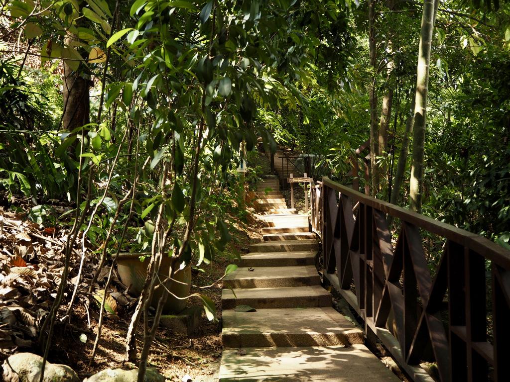 Etap 3: Kuala Lumpur & Batu Caves. Jaskinie, ścieżki w lesie i deszcz... 20
