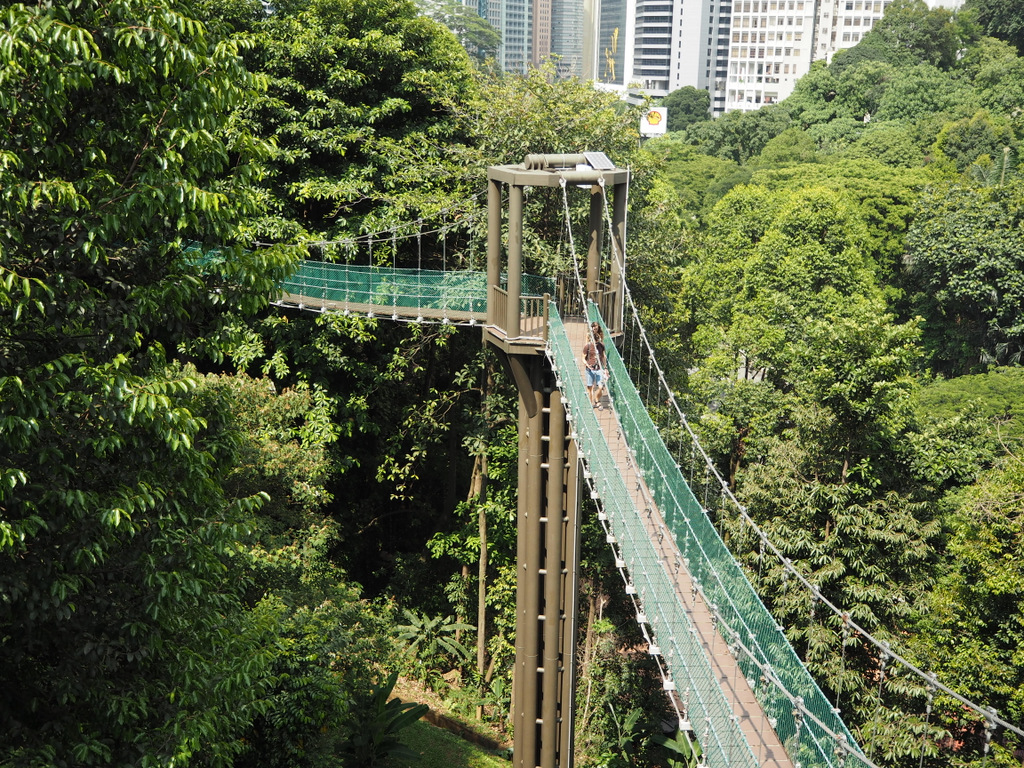 Etap 3: Kuala Lumpur & Batu Caves. Jaskinie, ścieżki w lesie i deszcz... 18