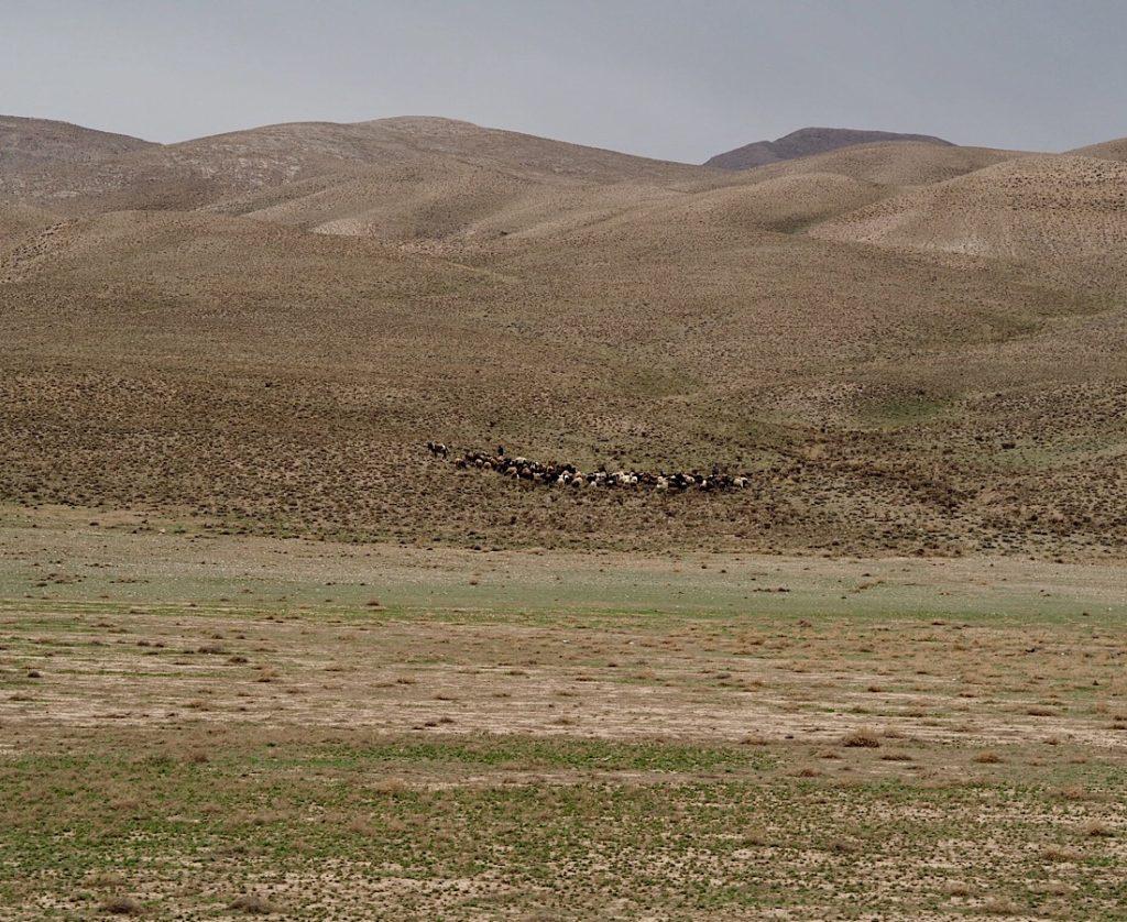 Gruzja-Armenia-Iran-Stambuł. Dzień 7: Koleją do Sari 8