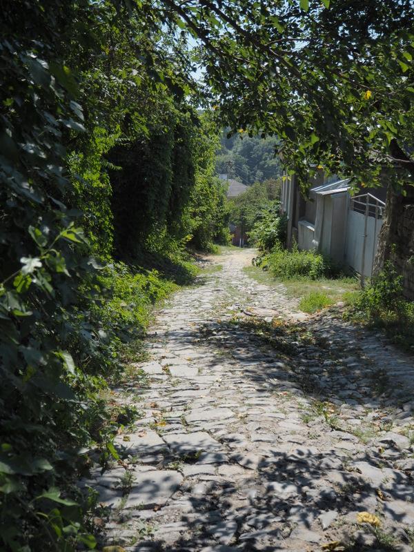 Kamieniec Podolski i Chocim. Jak daleko tu, jak blisko... (Dzień 5) 18