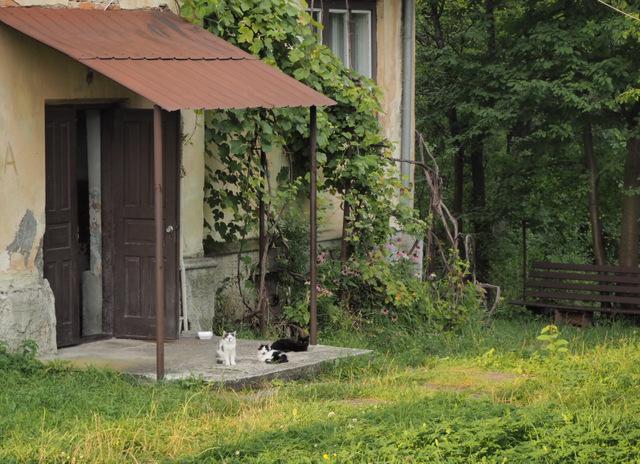 Ukraina autostopem? Dzień 8: Drohobycz, tak blisko i tak daleko... 7
